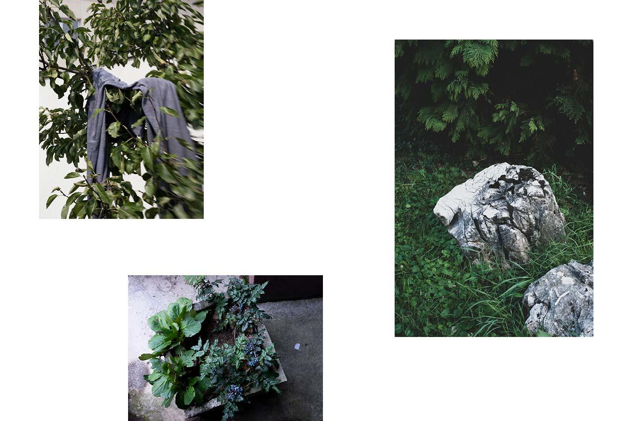 Sarajevo : vêtement abandonné, plante décorative dans cité d'habitations modestes, pierres décoratives sur parking.