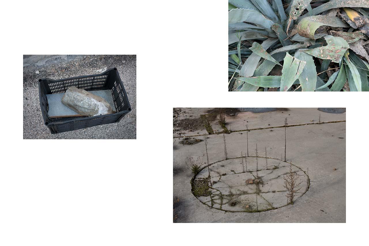 Athènes : ready-made cageot avec pierre sur un trottoir. — Arles : zone industrielle, plante grasse, sauvage. — Toulouse : zone urbaine, travaux abandonnés.