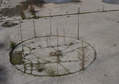 Toulouse: zone urbaine, travaux abandonnés.