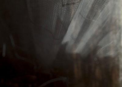 Corinne Deniel, Incessante finitude, image 20