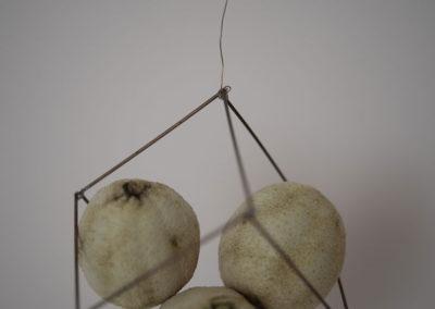 Cube: citrons secs, sculpture, cage, fil de fer, remplir le vide.